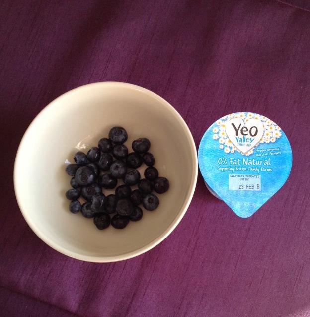 Blueberries and Natural Yogurt